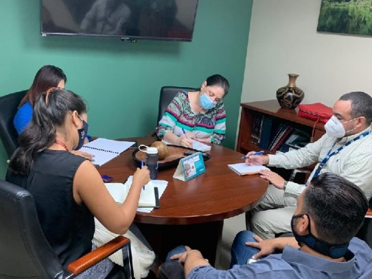 MiAmbiente y Anarap re reúnen para planificarla reactivación económica del sector maderero