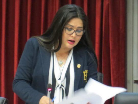 Diputada Rodríguez explica proyectos de Ley ante el Consejo Municipal