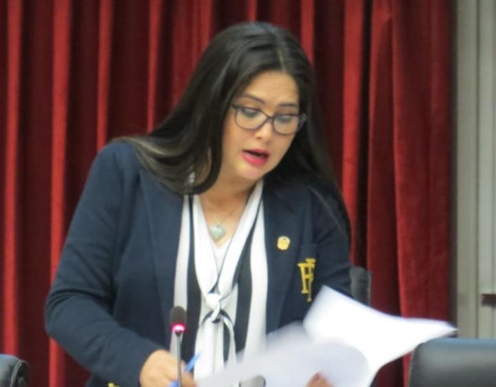 Zulay Rodríguez propone impuesto de 12.5% a remesas de extranjeros